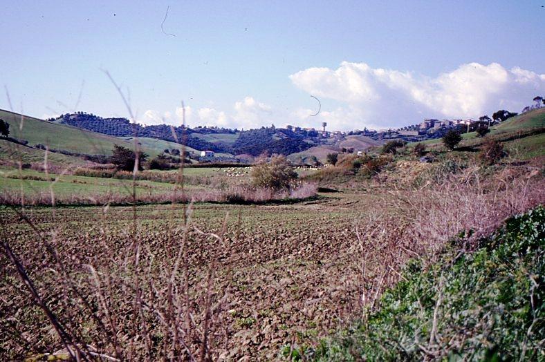 Crotone valle lamposa848