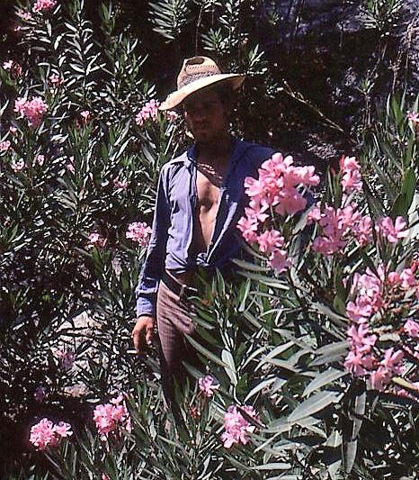 umbriatico198