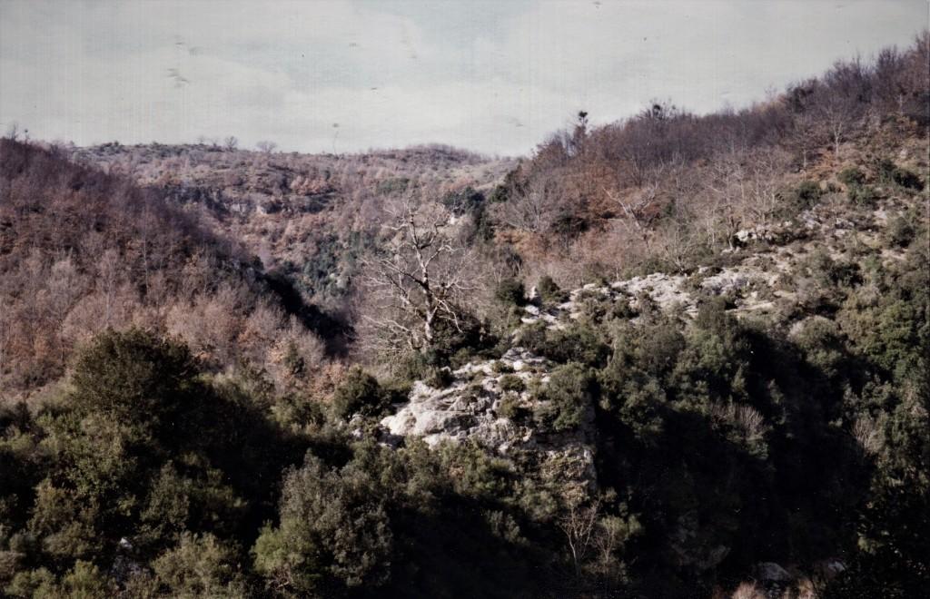 004-verzino-grotta-dei-furfuri508