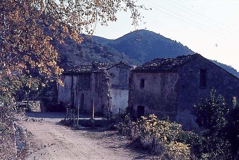 006-carello555