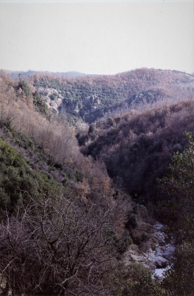 008-verzino-grotta-dei-furfuri512