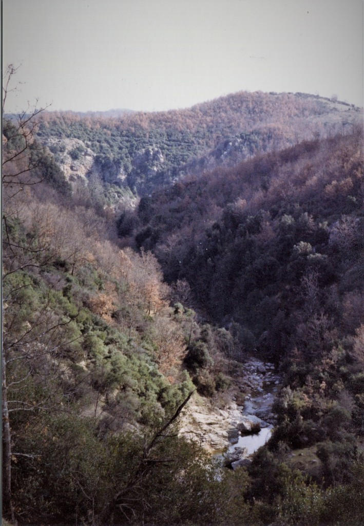 009-verzino-grotta-dei-furfuri513