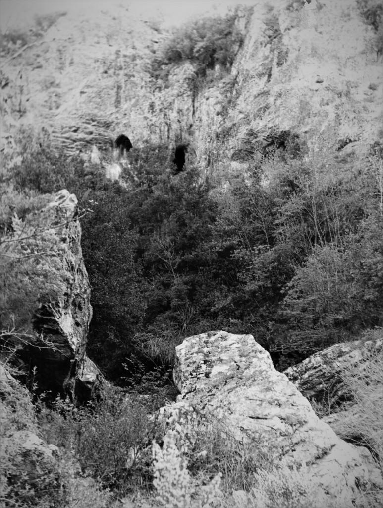 017-verzino-grotta-dei-furfuri522