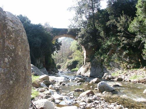 ponte-cropa-petilia-policastro-01